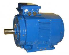 Трехфазный асинхронный электродвигатель с короткозамкнутым ротором общепромышленного назначения 4АМНУ225, 250