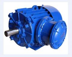 Explosion-proof electric motor 2AIU280-355