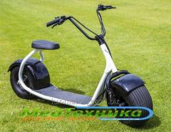 SEEV Citycoco electroscooter (black-and-white)
