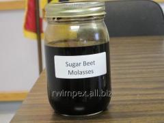RW Impex from Ukraine exports Beet molasses