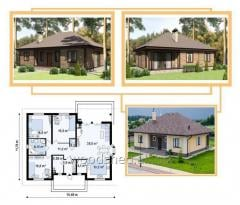 Box of the one-storey house, total area - 190,0 m