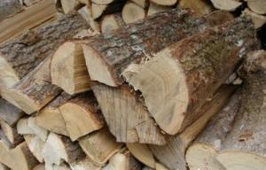 Продам дрова ( тополь )  цена, купить в Украине