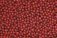 Frozen Cowberry