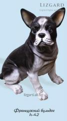 #1004 / French bulldog *