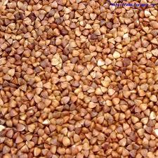 Buckwheat. Buckwhea