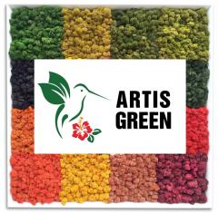 СТАБИЛИЗИРОВАННЫЙ МОХ (ЯГЕЛЬ) от  Artis Green