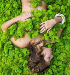 The stabilized moss, direct deliveries from