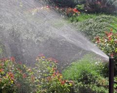 The device of automatic watering on a site