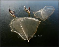Кастинговая сеть американского типа, парашют, для промышленного лова