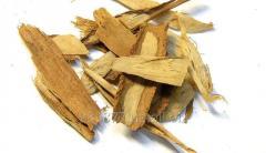 Cinnamon is broken