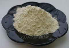 Onions powder