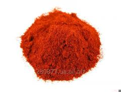 Ground paprika of Chile