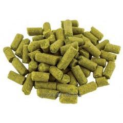 HERSBRUKER hop (Hersbrucker) - 50 gr. α-2,6%