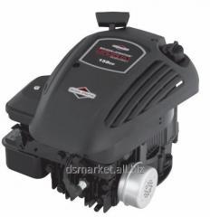 Engine petrol Briggs&Stratton 500 of E