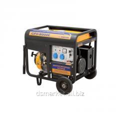 Petrol Sadko generator of Gps-8000E