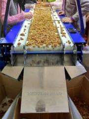 Puieti de soiuri de nuc