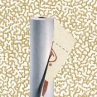 Vapor-permeable membrane TYVEK SOLID (Switzerland)