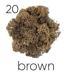 The stabilized moss. Artis Brown 11 color