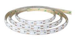 LED tape SMD 3014, 120sht/m, 12W/m, IP65 White