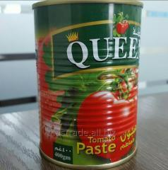 Paste of tomato 400 g of 22-24% (EW
