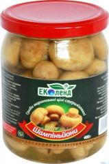 Mushrooms of a shampinyona of marines, 480 gr