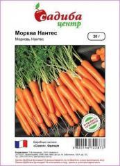 Морква столова Нантес 20грам (Садиба)
