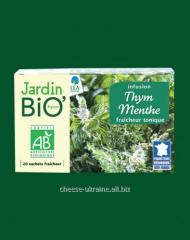 Herbal tea with a thyme and min