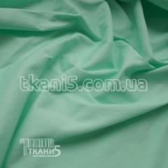 Fabric Bengalin (mint) 5127