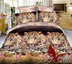 Комплект постельного белья ТМ TAG 3D BL3113, арт. 257212571