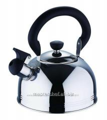 Teapot of 2,5 l from Wellberg WB 6009 stainless