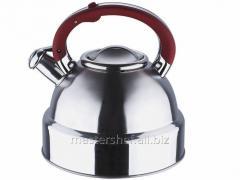 Teapot of 4 l, Wellberg WB 6092