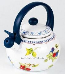 Teapot the enameled Wellberg WB 3413