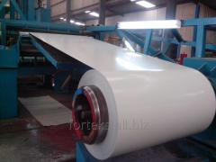 Galvanized roll with a polymeric covering
