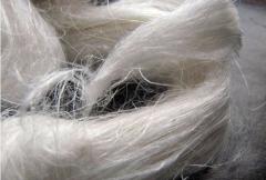 Flax fiber short (flax fiber short), flax Fibre