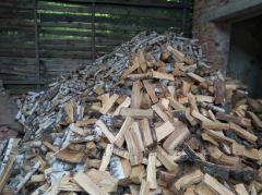 Firewood kolot_ sukh_