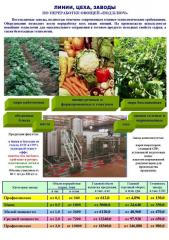 Equipment for processing of vegetables and