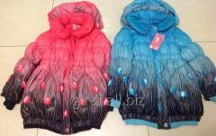Down-padded coat Tulips with a hood on the