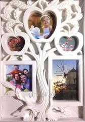 Frame a collage on 5 photos, the Tree, white,