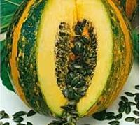 Esau / eso — pumpkin, semo of 100 grams
