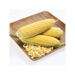 Karamello f1/karamello f1 — corn, may seeds of 5