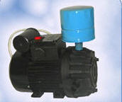 The vacuum pump of dry type (without framework)