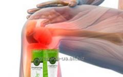 Hondroktum - cream from joint pain