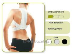 Corset for posture correction elastic