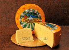 Cheese of firm abomasal Russian big 50% of fa