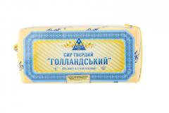 Cheese of firm abomasal Dutch brusochny 45% of fa