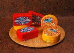 Cheese abomasal Cheddar of the Ukrainian 50% of fa