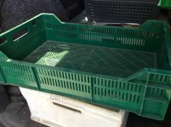 Box plastic 600х400х160