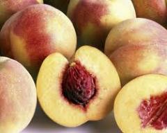 Саженцы персика Возможность поставки оптом и