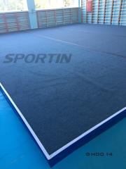 Gymnastic carpet