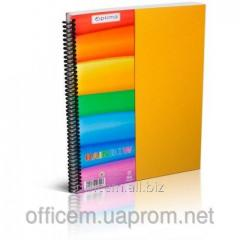 Notebook of A4, 80 l., plastic. the cover, klt.,